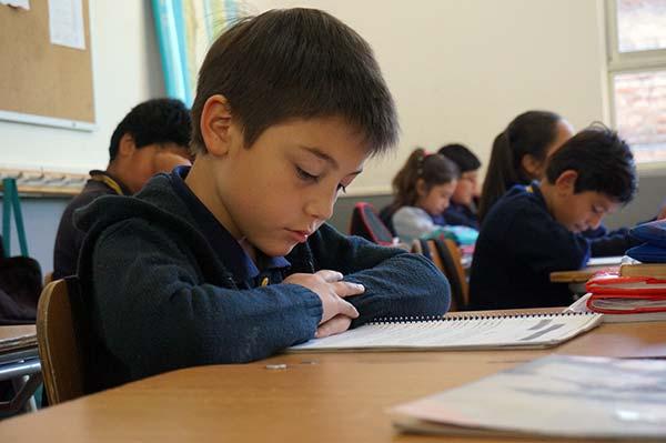 lectura liceo las mercedes CEAS